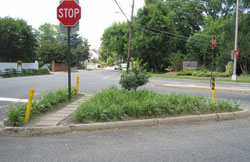 I 395 Intersection garden